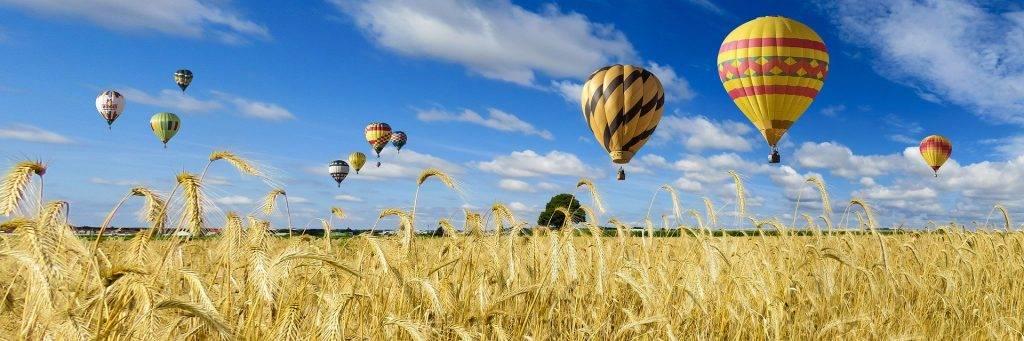 Montgolfière dans un champ de blé - Alhaya