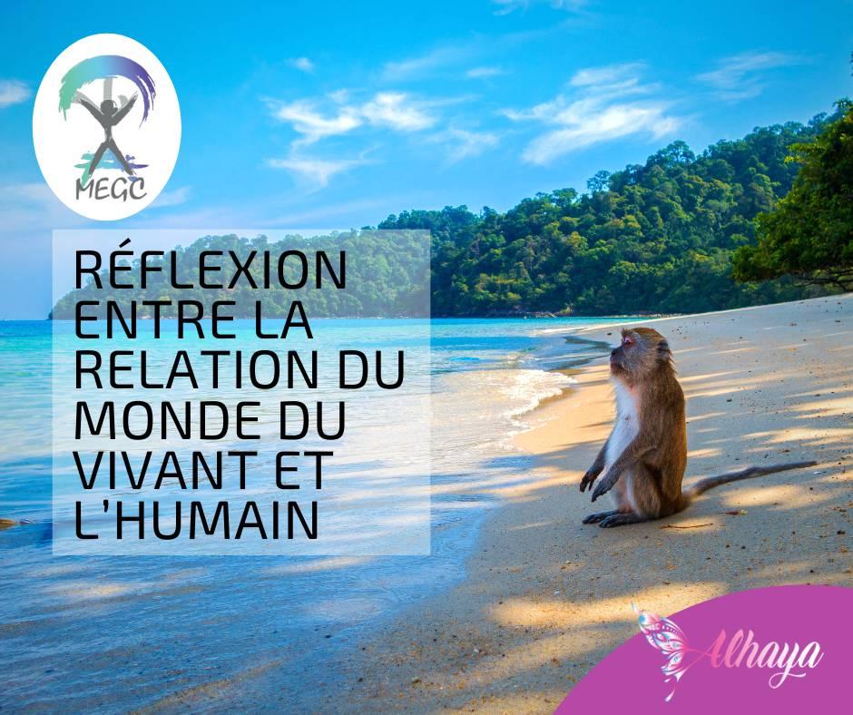 Article Réflexion entre la relation du Monde du Vivant et l'Humain - Alhaya
